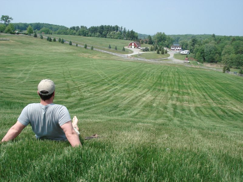 Image result for woodstock the field
